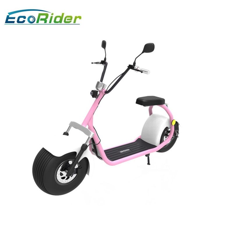 Ecorider 2 Wheel Electric Bicycle Scooter , Lt019 Citycoco Bike With Double Seat